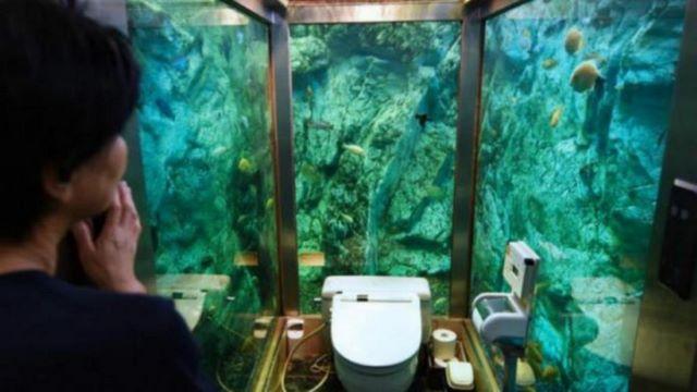 japonskoe kafe proslavilos na ves mir tualetom v akvariume