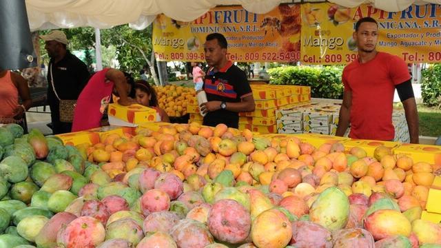 v dominikane projdet festival mango