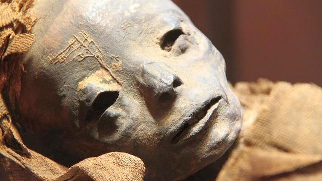 vo vseh egipetskih muzejah razreshili fotografirovat