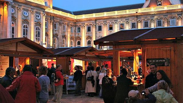 mezhdunarodnyj vinnyj festival v budapeshte