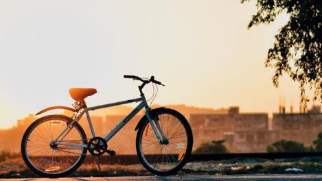 Бесплатно попасть в музеи Вены смогут те кто ездит на велосипеде